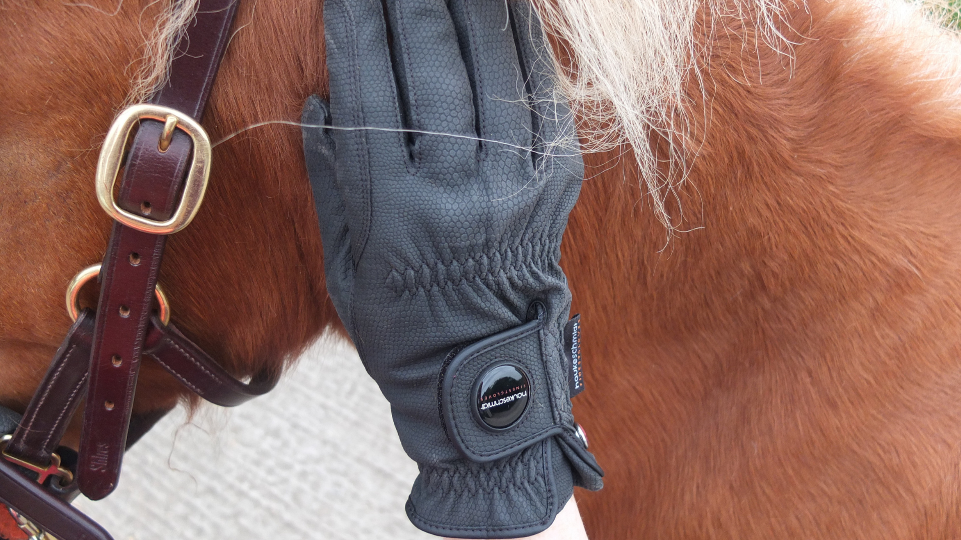 Cold hands? Click here to find out more about the Nordic Dream Winter Riding Gloves