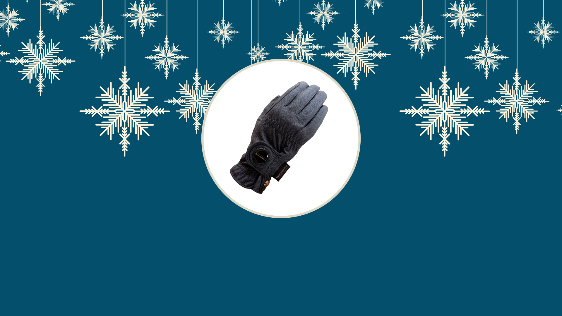 Help keep your hands warm this winter with the Nordic Dream Riding Glove, available now
